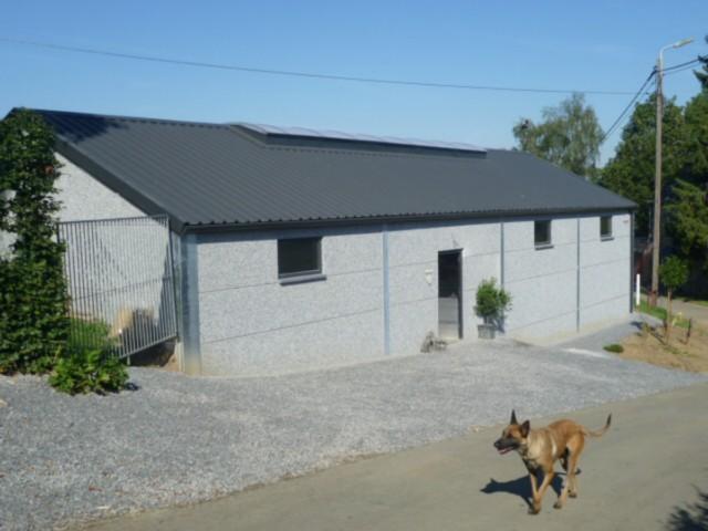 Le bâtiment et notre chien de garde
